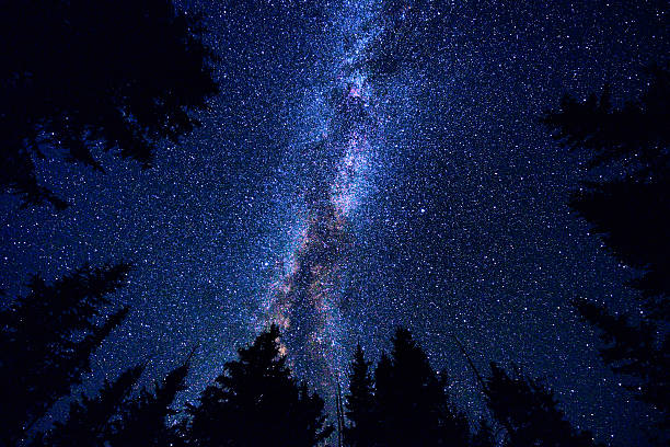 sky and mountain forest at night with milky way galaxy - star shape stock photos and pictures