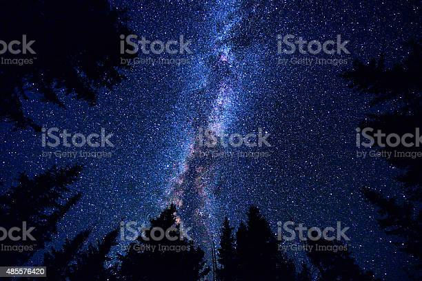Photo of Sky and Mountain Forest at Night with Milky Way Galaxy