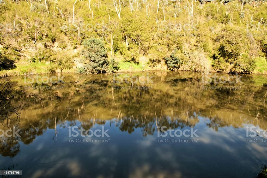 Sky and trees reflecting off water. stock photo
