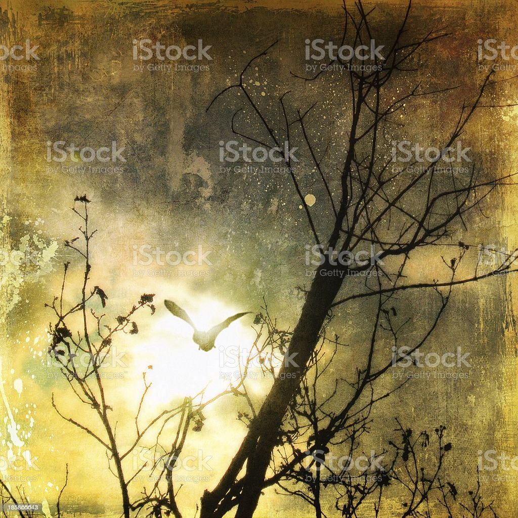 Sky background with bat and bare trees royalty-free stock photo