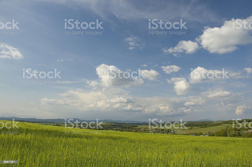 Sky blue, Grass Green stock photo
