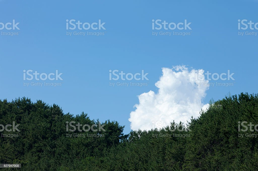 sky, clouds stock photo