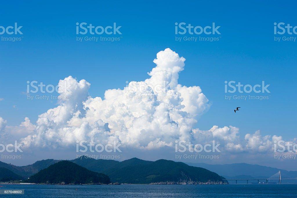sky, clouds, seagulls stock photo