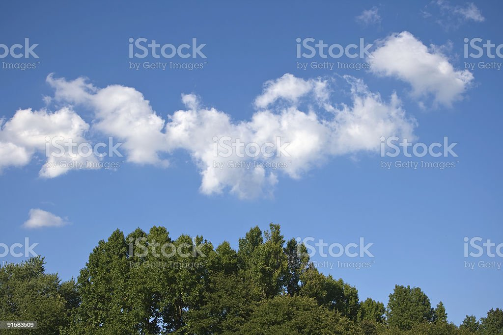 Sky Clouds & Treetops royalty-free stock photo