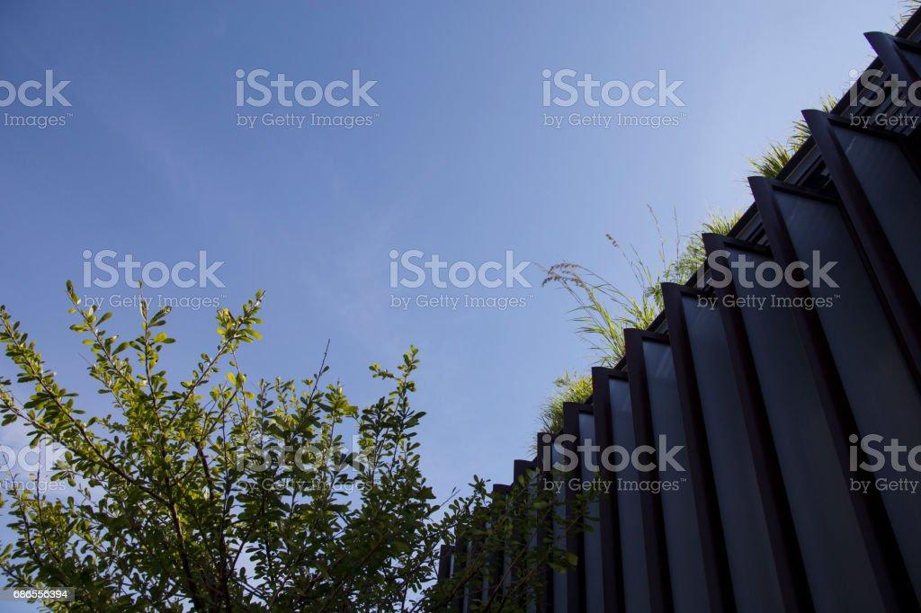 Sky garden royaltyfri bildbanksbilder