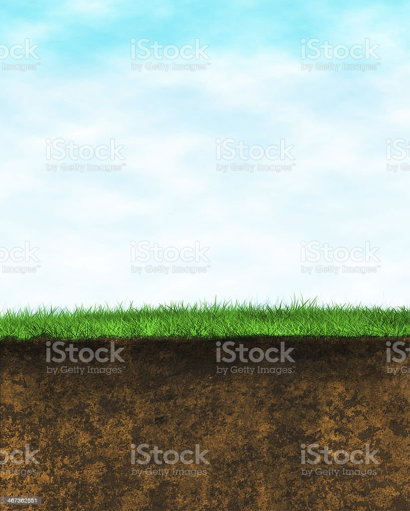 Sky Grass Earth background stock photo