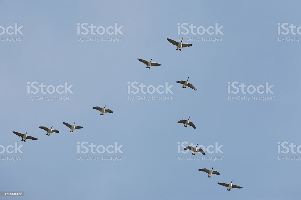 Sky is the limit! royalty-free stock photo
