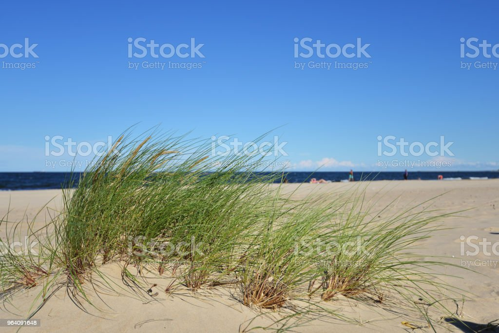 sky over dunes - Royalty-free Beach Stock Photo