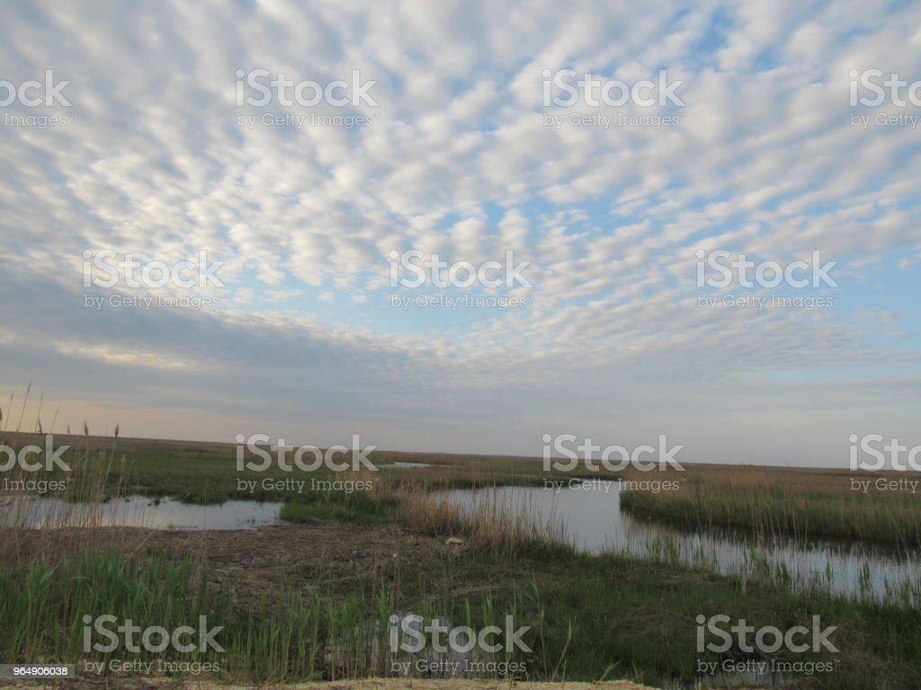 草地上的天空 - 免版稅光束圖庫照片