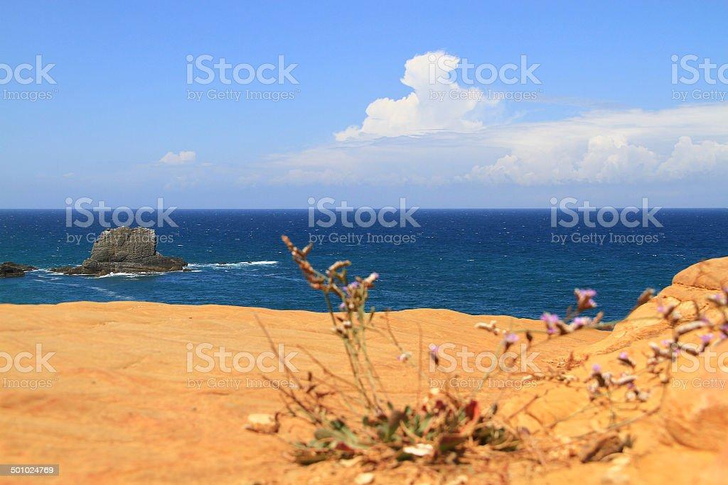 Sky, sea and ground stock photo