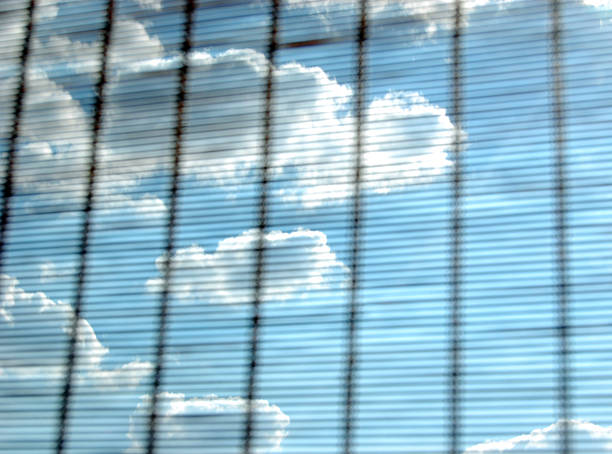 sky throughout rattan stock photo