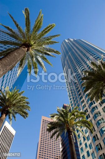 Tall buildings and palm trees in downtown Los Angeles