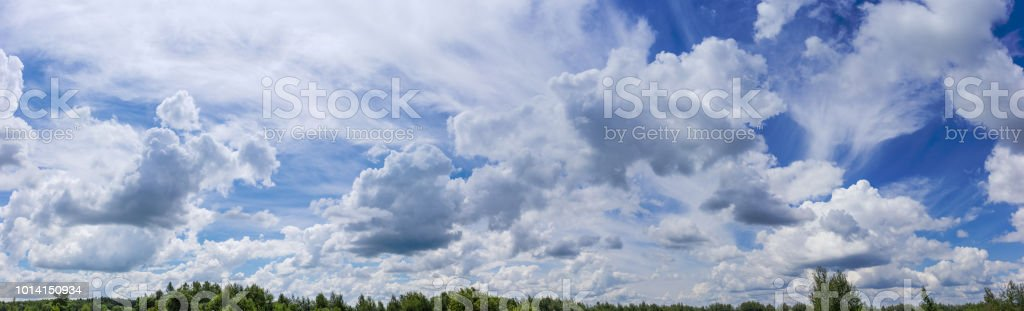Sky with cirrus and cumulus clouds over the trees stock photo