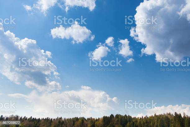 Photo of Sky with forest