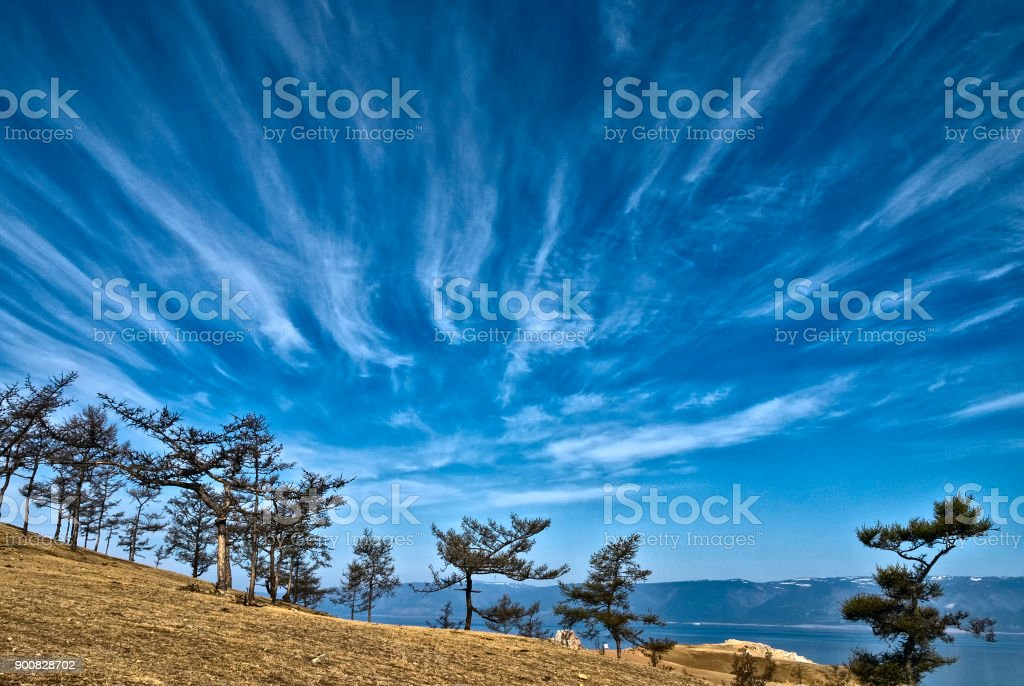 sky with trailing clouds over the Cape with trees stock photo