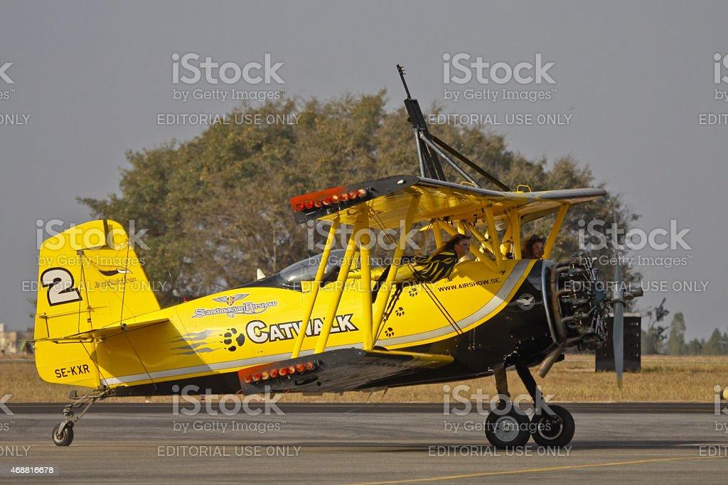 SkyCats stock photo