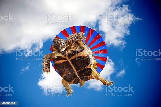 Skydiving picture id464961811?b=1&k=6&m=464961811&s=612x612&h=acgbfrgzfav hgxotoqegp2snazw4ny4e9jjju jsnc=