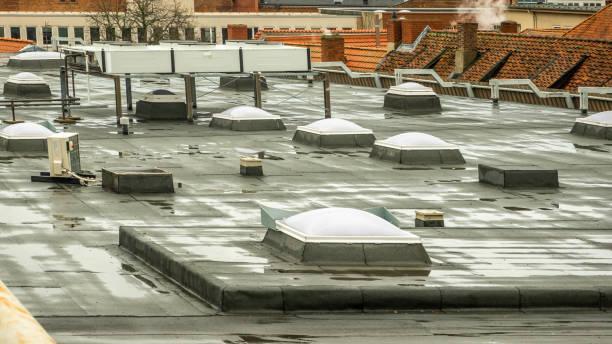 lucarnes sur le toit d'un magasin dans le centre ville - concave photos et images de collection