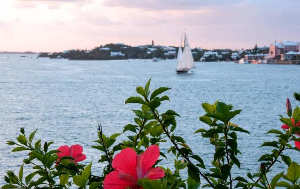 Skyline and sailboat across the bay  in Hamilton, Bermuda stock photo