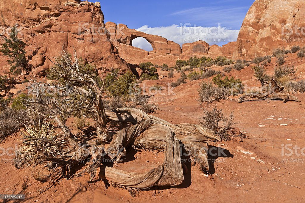 Skyline Arch, Arches National Park royalty-free stock photo