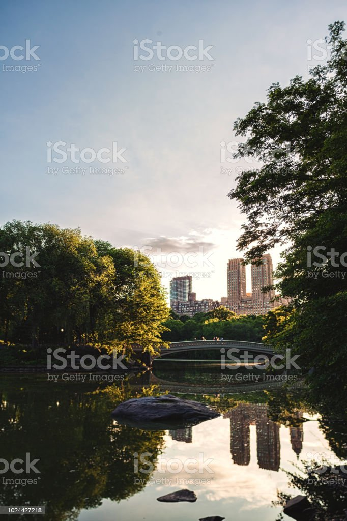 NYC skyline from Central Park royalty-free stock photo