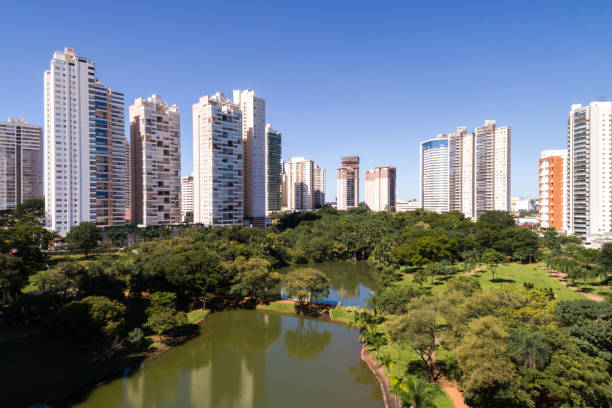Skyline of Goiânia (GO), showing Flamboyant park High angle view of Goiânia (GO), showing Flamboyant park goiás city stock pictures, royalty-free photos & images