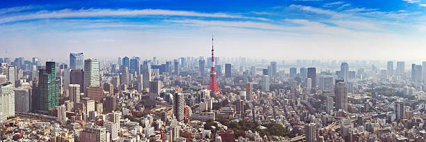 Skyline of Tokyo, Japan with the Tokyo Tower, from above stock photo