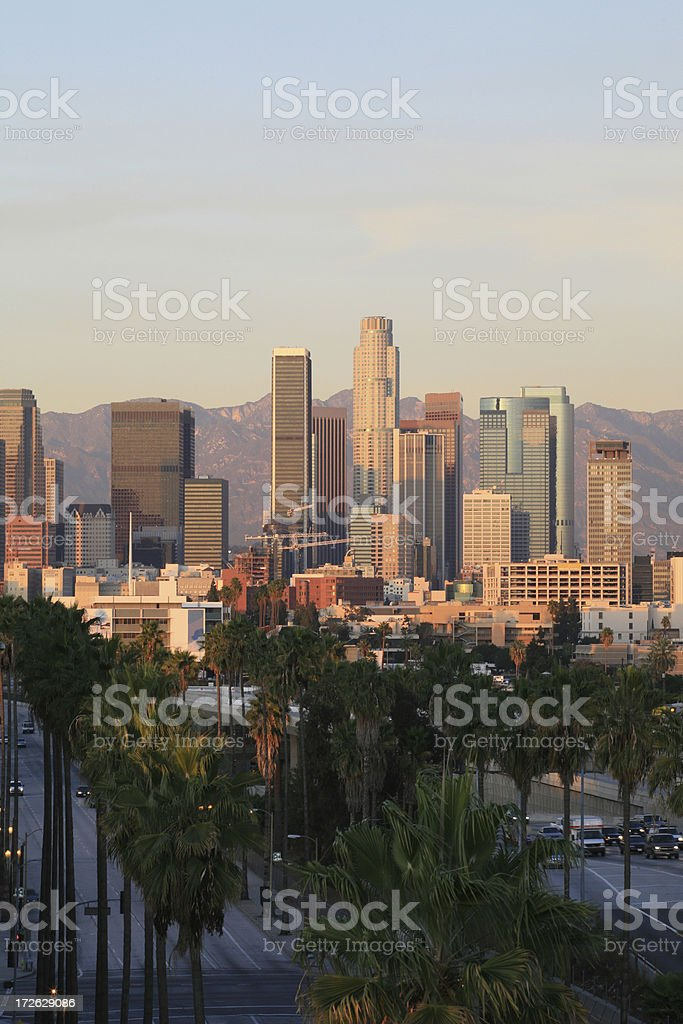 LA Skyline (Portrait) royalty-free stock photo