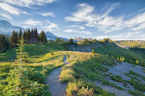 Skyline Trail In Mount Rainier Stockfoto en meer beelden van Alberta
