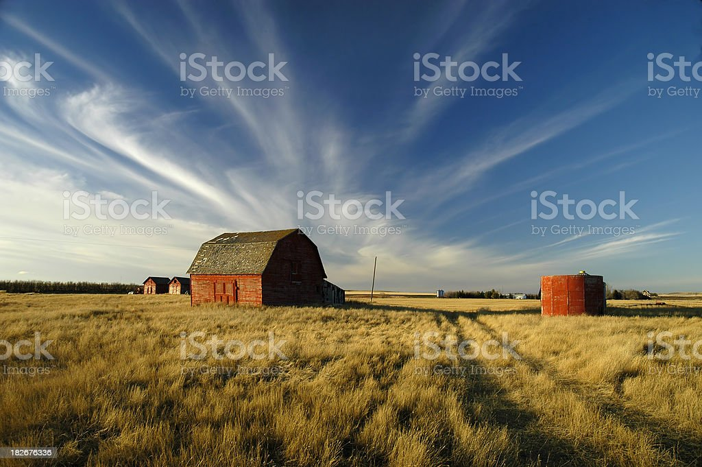 sky's Alive!!! stock photo