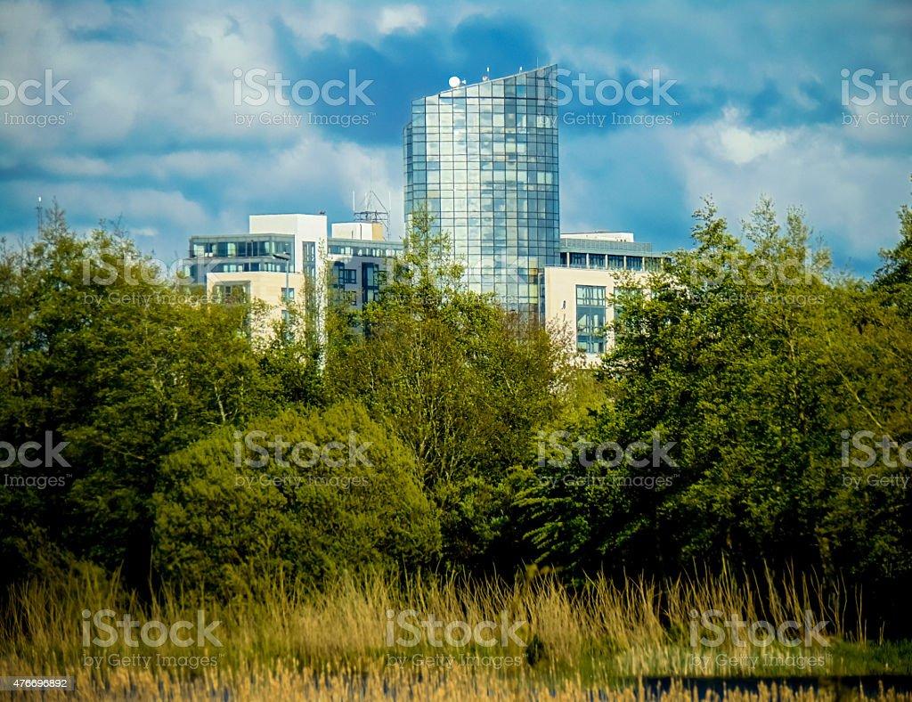 Skyscraper in trees stock photo