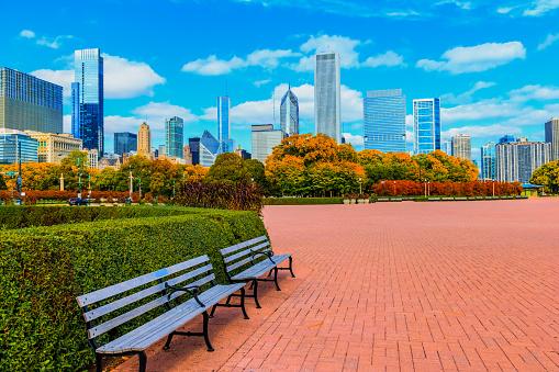 Skyscraper of Chicago Skyline and Grant Park,ILL (P)