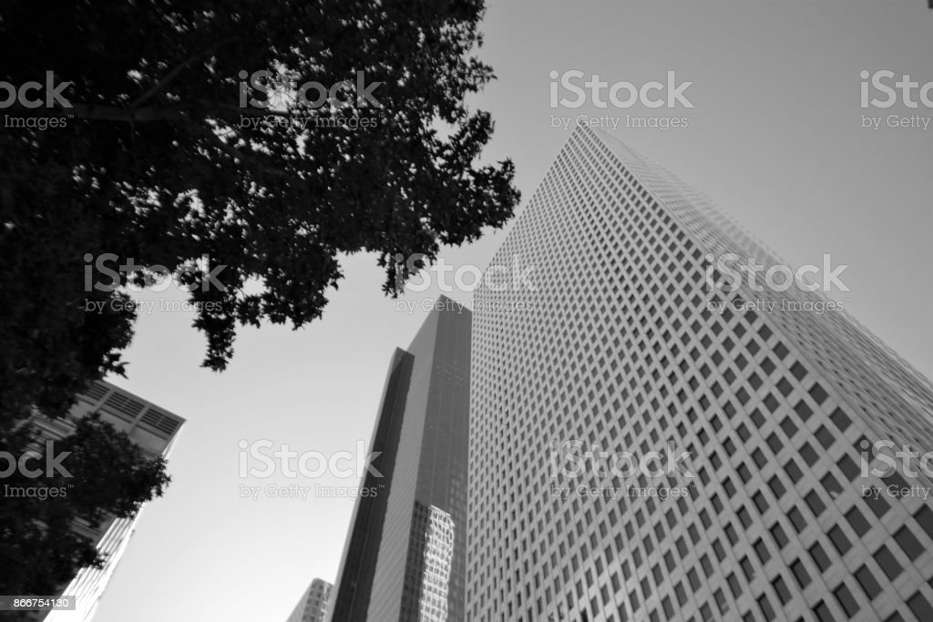 Skyscrapers in Houston, Texas (Black and White) stock photo