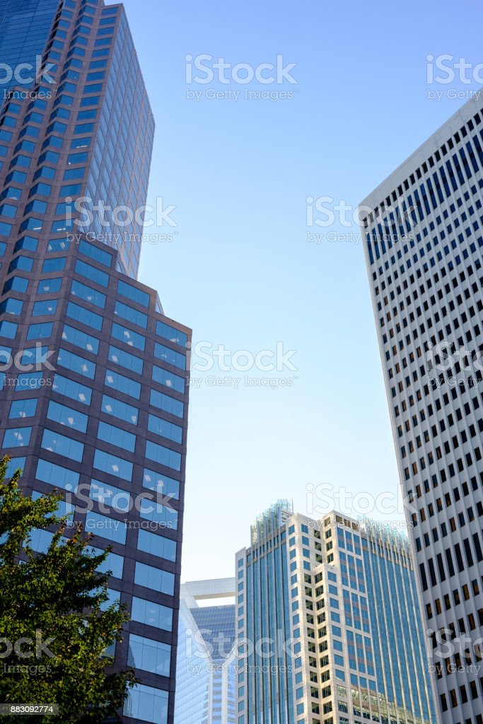 Skyscrapers in the Late Afternoon stock photo