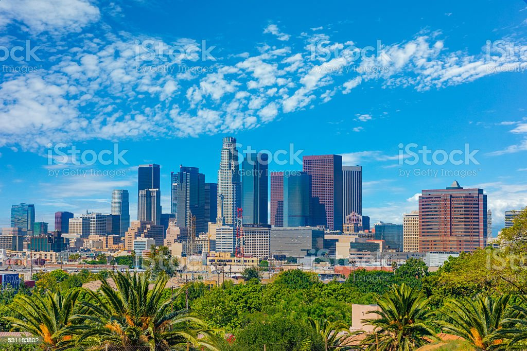 Skyscrapers of Los Angeles skyline with palm trees,CA stock photo