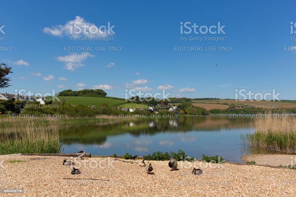 Reserva natural de Slapton Ley de Torcross perto de Slapton areias Devon UK - Foto de stock de Azul royalty-free