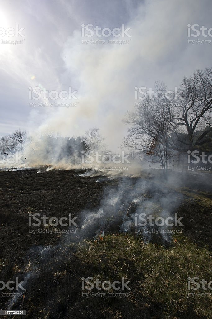 Slash and Burn royalty-free stock photo