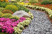 Schiefer Gartenweg, gesäumt mit verschiedenen Chrysanthemen