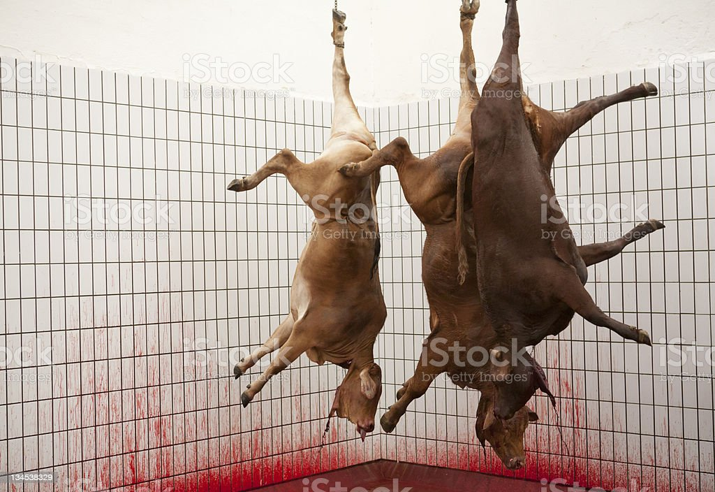 Abattoir - Photo