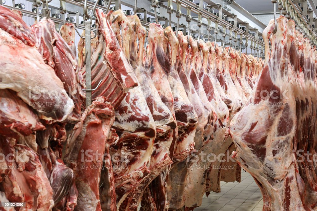Slaughterhouse stock photo
