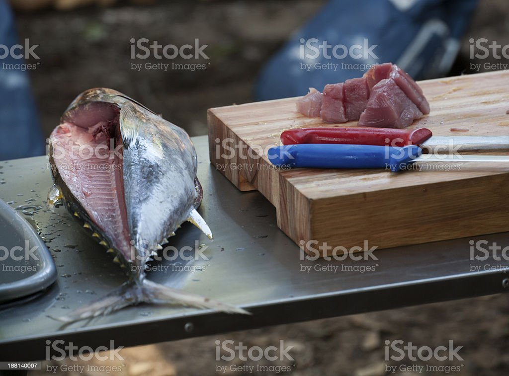 Slaughtering Tuna stock photo