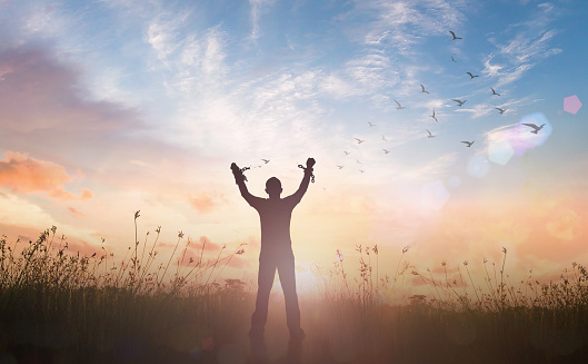 International human rights day concept: Silhouette slave hands broken chains with bird flying against twilight sky and meadow sunrise background