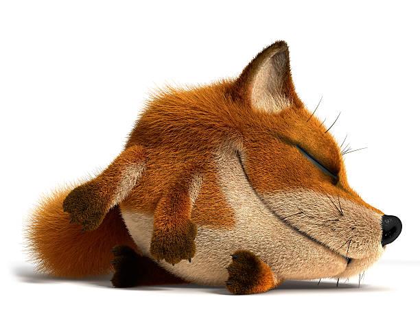 Sleep fox picture id160515871?b=1&k=6&m=160515871&s=612x612&w=0&h=pyribhhj8uroc0ajpqos 3l0ttfmhvlpm8dcashu3x8=
