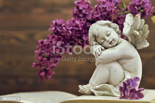 istock Sleeping angel and flower 880933976