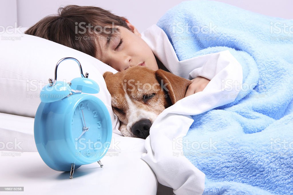 Sleeping Friends royalty-free stock photo