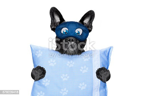 istock sleeping in bed 579226418