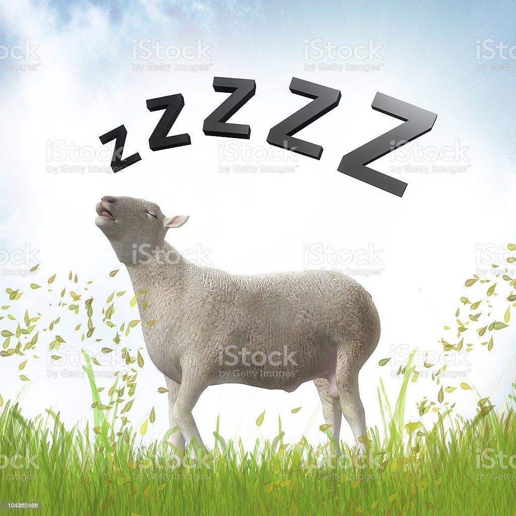 Sleeping lamb illustration stock photo