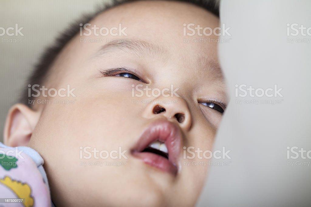 Sleeping little boy royalty-free stock photo