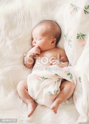 853843596 istock photo Sleeping newborn baby in a wrap on white blanket. 853843702