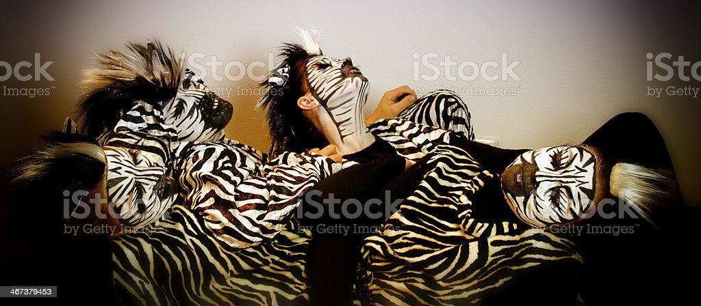 Sleeping Zebra stock photo